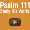 Psalm 111 Study His Works